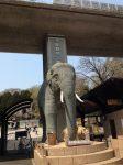 多摩動物公園の入り口